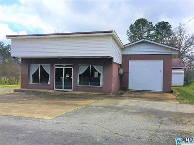 Commercial For Sale: 2330 Hwy 46