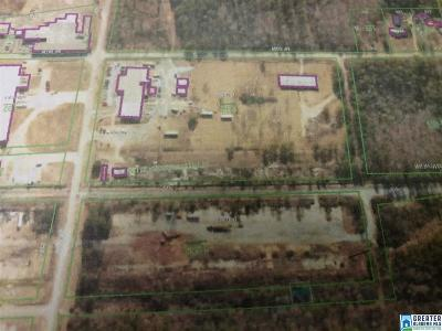 Commercial For Sale: Pleasant Valley Rd