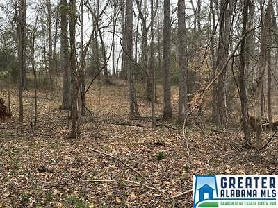 Wedowee AL Residential Lots & Land For Sale: $28,000