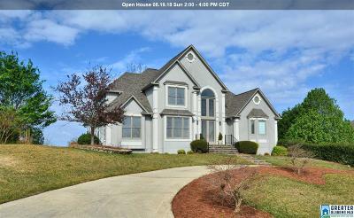 Birmingham AL Single Family Home For Sale: $525,000