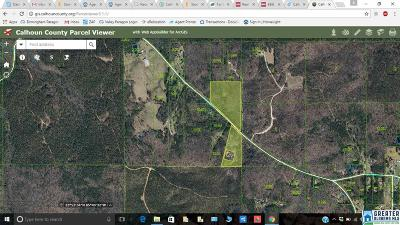 Jacksonville AL Residential Lots & Land For Sale: $42,000
