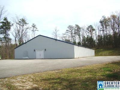 Cleburne County Commercial For Sale: 8 Masada Mountain Dr
