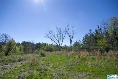 Residential Lots & Land For Sale: Hwy 55