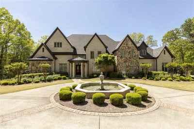 Birmingham AL Single Family Home For Sale: $1,300,000