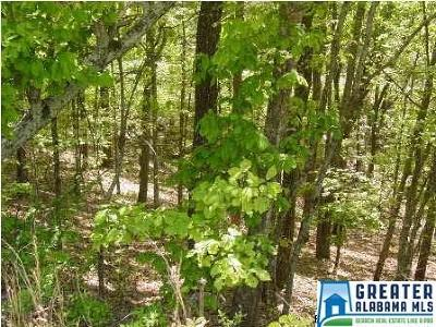 Jacksonville AL Residential Lots & Land For Sale: $109,000