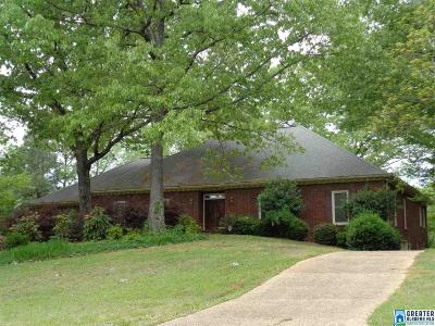 Birmingham Single Family Home For Sale: 437 St Annes Dr