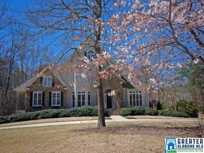 Birmingham Single Family Home For Sale: 674 Highland Lakes Cove