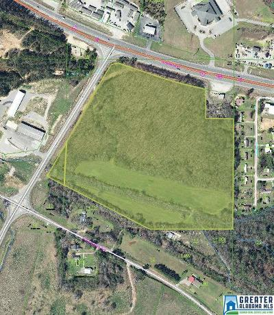 Anniston Residential Lots & Land For Sale: 3000 Hwy 431
