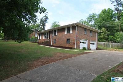 Hoover Single Family Home For Sale: 3152 Old Columbiana Rd