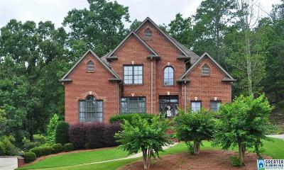 Birmingham Single Family Home For Sale: 1005 Locksley Cir