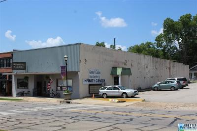 Randolph County Commercial For Sale: 908 Main St