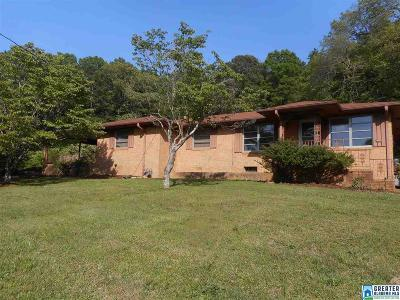 Birmingham Single Family Home For Sale: 2401 Old Springville Rd