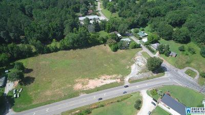 Commercial For Sale: Hwy 22
