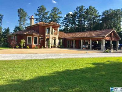 Clay County, Cleburne County, Randolph County Single Family Home For Sale: 455 Wylie Rd