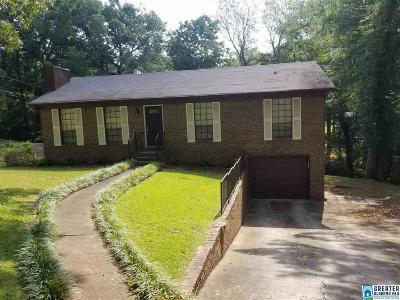 Birmingham Single Family Home For Sale: 1119 Sunscape Cir