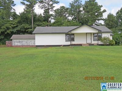 Clay County, Cleburne County, Randolph County Single Family Home For Sale: 102 Allen Smith Rd
