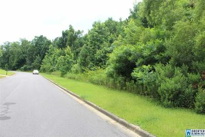 Residential Lots & Land For Sale: 2051 Liv Dr