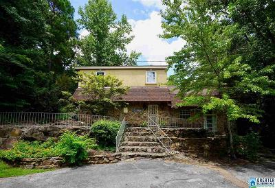 Riverchase Single Family Home For Sale: 1146 Riverchase Pkwy