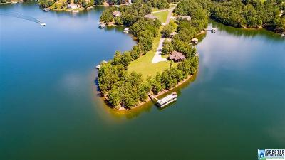 Randolph County Single Family Home For Sale: 1219 Co Rd 816