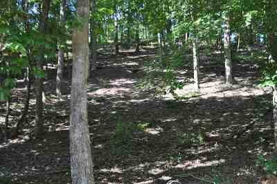 Wedowee Residential Lots & Land For Sale: Co Rd 3292
