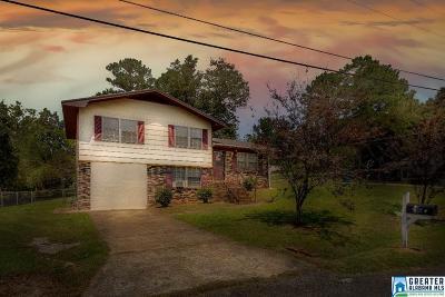 Oxford Single Family Home For Sale: 167 Dallas Ave