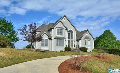 Birmingham Single Family Home For Sale: 2085 Brook Highland Ridge