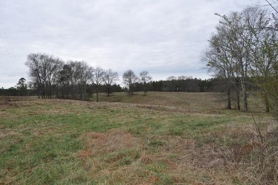Randolph County Residential Lots & Land For Sale: 838 Co Rd 499