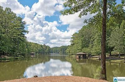 Single Family Home For Sale: 225 Valley Lake Rd