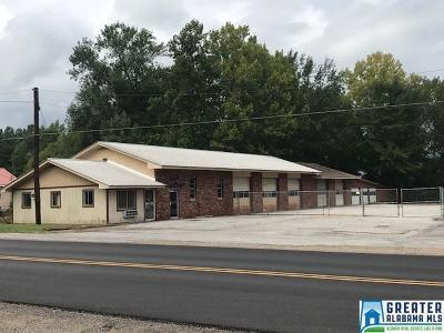 Commercial For Sale: 802 Memorial Dr
