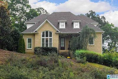 Chelsea Single Family Home For Sale: 120 Greenbriar Pl
