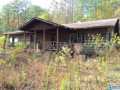 Single Family Home For Sale: 251 Oak Dr