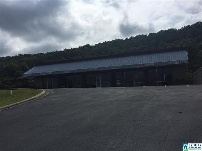 Pelham AL Commercial For Sale: $1,400,000