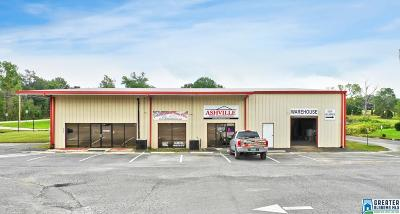 Commercial For Sale: 36235 Hwy 231