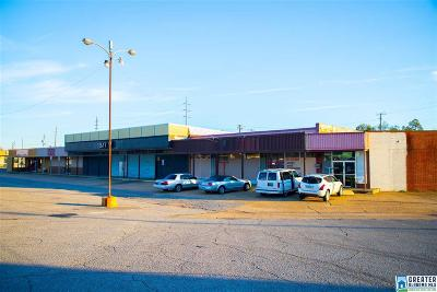 Commercial For Sale: 3217 10th St