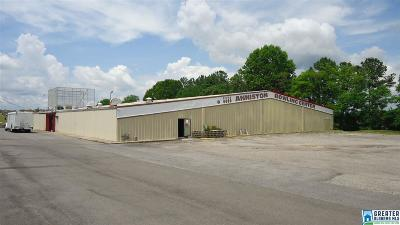 Commercial For Sale: 321 E Blue Mountain Rd