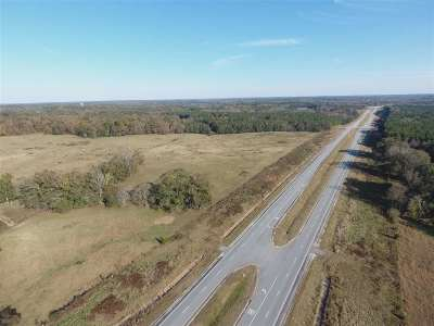 Commercial For Sale: 20665 Hwy 50