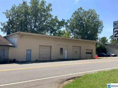 Commercial For Sale: 52805 Hwy 25