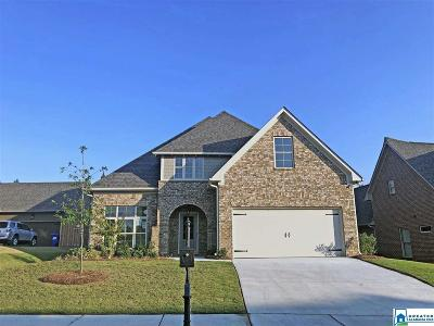 Chelsea Single Family Home For Sale: 1053 Evan Cir