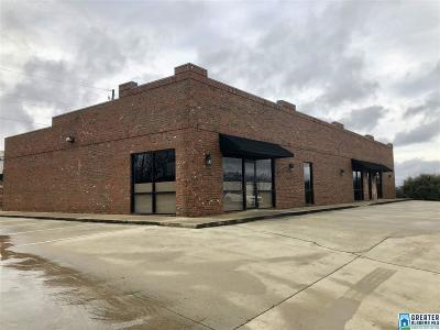 Commercial For Sale: 1018 Aviators View Dr