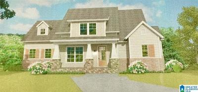 Birmingham Single Family Home For Sale: 156 Bridge Dr