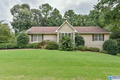 Single Family Home For Sale: 20904 Agnes Dr