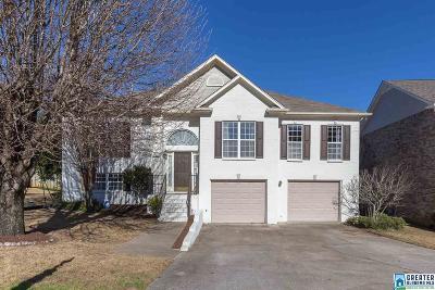 Birmingham Single Family Home For Sale: 165 Lenox Dr