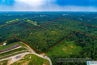 Residential Lots & Land For Sale: +/- 64 Acres Old Kellyton Rd