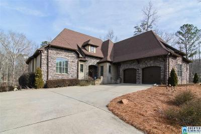 Chelsea Single Family Home For Sale: 113 Courtyard Dr