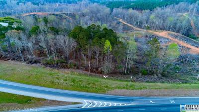 Residential Lots & Land For Sale: +/-5 Acres Hwy 280