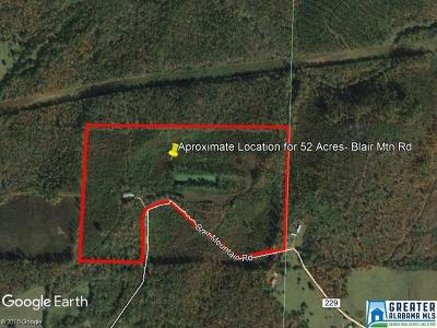 Residential Lots & Land For Sale: 300 Blair Mountain Rd