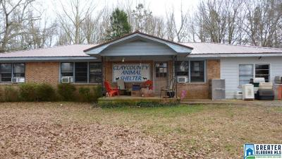 Clay County, Cleburne County, Randolph County Single Family Home For Sale: 43 Ratley Rd