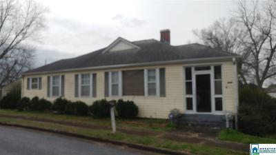 Single Family Home For Sale: 207 Alexander St