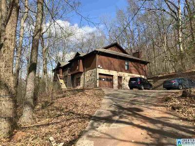Birmingham Single Family Home For Sale: 1236 Robin Ln