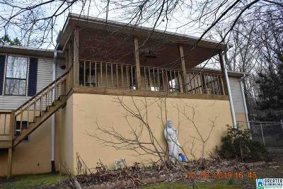 Single Family Home For Sale: 6229 Saks Rd
